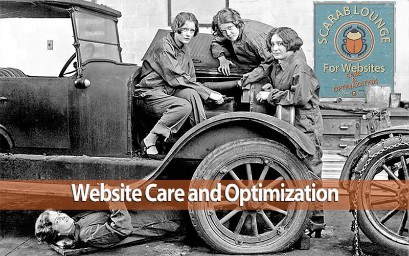 and /or Select: Website Care (Hosting) and Optimization